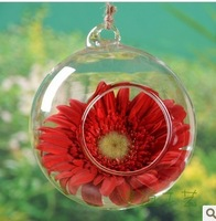 EMS Free Shipping! Dia 8cm 60PCS/LOT Hanging Glass Balls for Wedding,Hanging Glass Vase