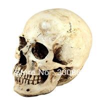 Halloween decoration toys props resin skull decorations