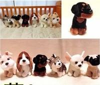 New 2013 cute animals plush dog toys 19cm 6style