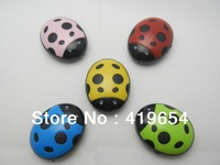 Mini Beetle MP3 Player Support TF MicroSD Card Max 8GB 5 Colors 20pcs/lot Post Free Shipping