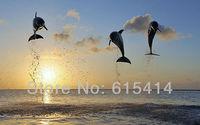 "10 dolphins in bay islands 38""x24"" Inch Wallpapr Sticker Poster"