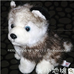 free shipping 14cm Plush stuffed animals siberian Aurora husky plush toy dogs/puppy dog for baby gift Y60(China (Mainland))