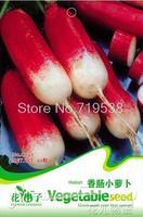1 Pack 30 Seeds Red Sausage Radish Seeds