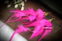 Free Shipping Fashion sistance yaju bohemia long earrings