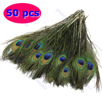 Free Shipping 50pcs/Pack Beautiful Natural Peacock Tail Feathers About 10-12inch For DIY Decoration