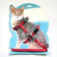 Adjustable Pet Cat Kitten Belt Nylon Lead Leash Halter Collar Harness Clasp Red and Black