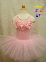 Retail New Hot Pink Kid Girls Lace Tutu Dress Floral for Dancing Children Ballet Baby Princess Kids Wear Infant Toddler Clothing