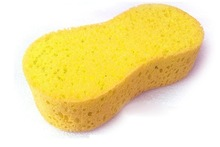 popular compressed sponge