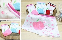 2013 New cotton girls boxer underwear, children underwear, children's pants, wholesale  Free Shipping 12pcs/lot