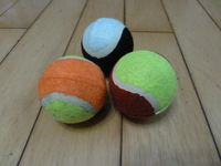 Cat toy dog toys elastic tennis ball baseball pet supplies Free Shipping
