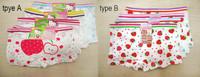NEW cotton Baby Girls 4 pack of Underwear Briefs Pantie Set Size :2-6 T n02
