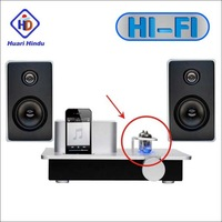 2013 Hot Selling Vacuum Tube Amplifier Mini Hi-Fi Audio Stereo Digital Amplifier Price In India High Power Home Amplifier