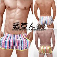 Croota lounge pants male panties 100% cotton multicolour stripe aro pants male trunk pajama pants