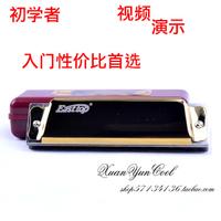 free shipping Harmonica blues harmonica c gold