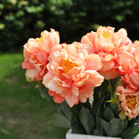 Free shipping 2 peony artificial flower silk flower artificial flower artificial flower