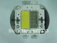 Newest!!100w aquarium led diodes,2 colors blue  white ,for marine reef coral aquarium LED lighting,USA free shipping