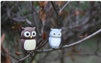 lovely Owl USB Flash Pen Drive 2GB 4GB 8GB 16GB 32GB (Free Shipping)