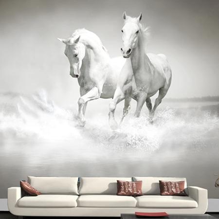 Horse white horse font b mural b font font b wallpaper b font fashion tv background 9 Impressive Horse Wall Murals