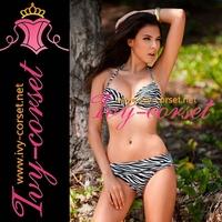 Free Shipping! Design Sexy Women's Swimsuit Swimwear Beachwear Bikini Set beach bikini in Zebra stripes Y3025