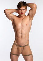 Free shipping New arrival 2013 male panties sexy mesh belt low-waist large trunk