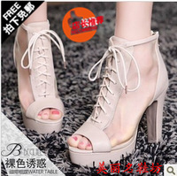 free shipping 2013 summer new arrival women's open toe boots ol breathable zipper sexy platform thick high-heeled sandal