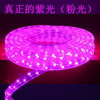 Led ceiling strip violet lantern rope light decoration lamp led line pink with lights background wall lantern