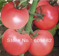 Free Shipping 1 Original packaging hybrid pink tomato seed * 5g 800+ pcs disease resistance seeds Spring, autumn can be planted