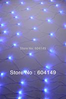 Party Xmas Christmas Wedding lights Net LED light 2.0 x 2.0m 200pcs LED bulbs Flash light 1pcs