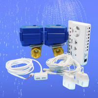 HIDAKA WLD-806 Factory Price Smart Home Security System Water Leakage Detection Alarms (DN25*1pcs)