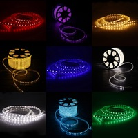 L009A100V-110V 5050 High Power SMD 5050 60Leds/M Flexible LED Strip
