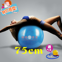 Free Shipping Thickening riot 75cm bulbar sofa hehuan ball fitness yoga ball sex chair adult sex products