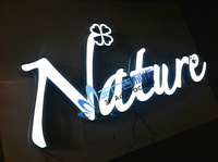 Nature stainless steel led  letter signs/light boxes/Acrylic letters