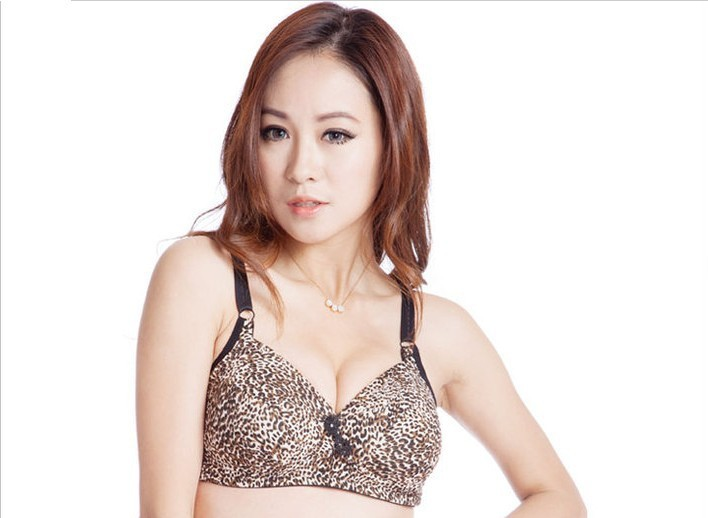 Free Shipping NEWLY Plus Size Leopard print C D Cup Bra Thin Push Up Vice Milk Coffice Big Size Leopard print Bras For Women 009