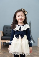 5pcs/lot,girls autumn dress  2013, baby girl dresses ,free shipping