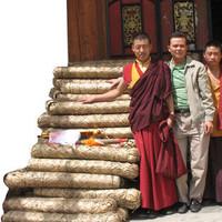 Advanced tibetan tea golden tips of tea black tea