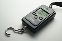 Portable Electronic Scale.Digital Handy Scales Luggage Fishing 40kg 88Lb Portable .