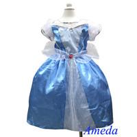 Halloween Girls Deluxe Cinderella Costume 2-8Y