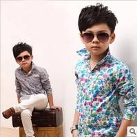 baby boy long-sleeve shirt 100% cotton autumn 2013 child blouse 5pcs/lot 3oclors