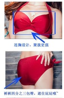 Small chest big chest bikini swimsuit skirt type bikini three-piece female