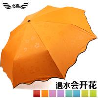 Newest Water umbrella candy color magic folding umbrella elargol
