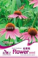 Free shipping 150 Echinacea purpurea seeds,,Hydrangea plant seeds,original pack seeds