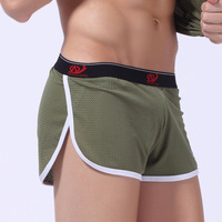 Net male loose low-waist panties sexy mesh trunk shorts male shorts derlook panties aro pants