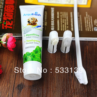 pet supplies mint flavoured pet toothpaste toothbrush set free shipping cleaning dog teeth and keep health