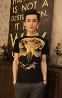 2014 Amoi Star Universe Symphony Eagles Lin curved Korean tidal wave of men cultivating short-sleeved T-shirt T