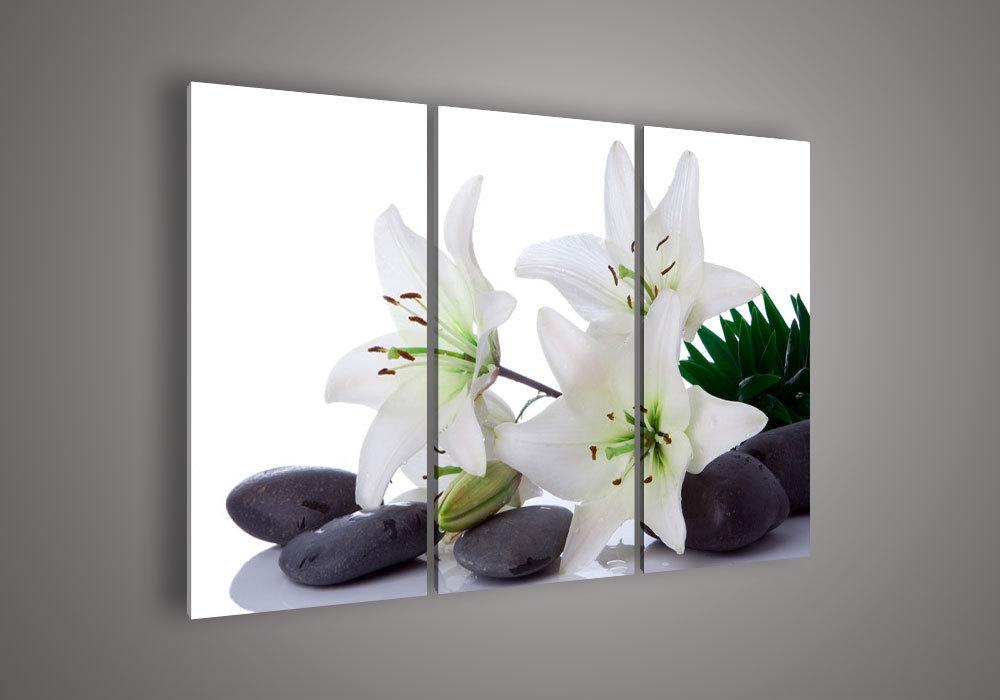 Flower Frame Black And White Flower Black And White