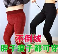 A236 quality velvet male thermal plus velvet basic ankle length trousers