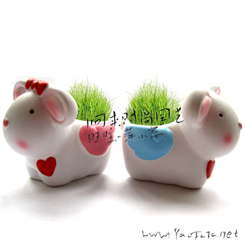 Mini plant lovers angel rabbit green grass bonsai grass head doll