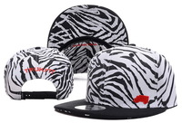 2013 TRUKFIT Widestyle  Snapback Cap  Men Basketball football Hip Pop ,  free Shipping