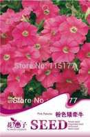 Free shipping 150 Petunia seeds,,Hydrangea plant seeds,original pack seeds