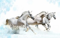 White Horses Painting Canvas Print  Modern Decoration Animal Print Sale